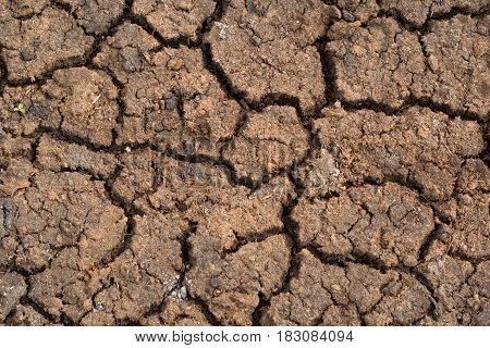 texture of a cracked ground for a background, backdrop