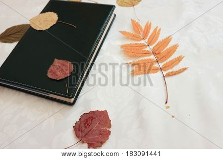 Notebook and yellow, orange and red leaves