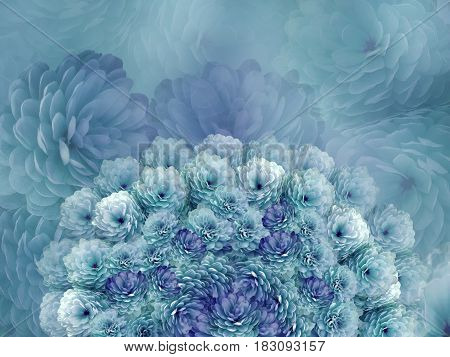 flowers background. Turquoise flowers chrysanthemum. Floral collage. Flower composition. Nature.