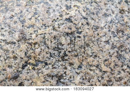 Texture Of Wet Granite