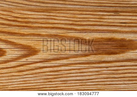 Texture Of An Old Wooden Board