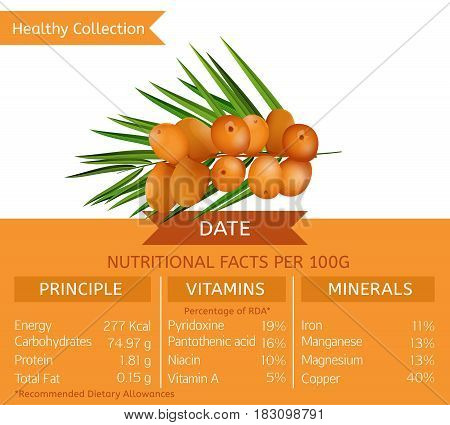 Date health benefits. Vector illustration with useful nutritional facts. Essential vitamins and minerals in healthy food. Medical, healthcare and dietory concept.