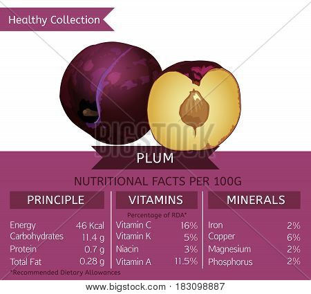 Plum health benefits. Vector illustration with useful nutritional facts. Essential vitamins and minerals in healthy food. Medical, healthcare and dietory concept.