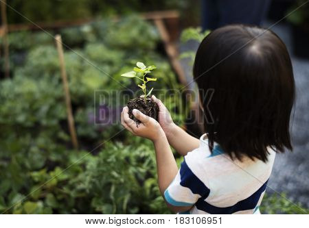 Environmental conservation child hand planting