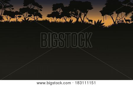 Silhouette of tree on the forest scenery vector illustration