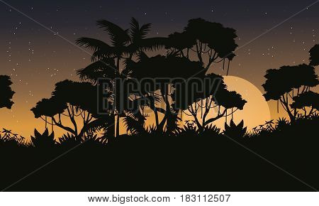 Landscape jungle forest with tree silhouette vector illustration