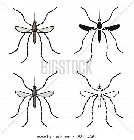 Mosquito icon in cartoon design isolated on white background. Insects symbol stock vector illustration.