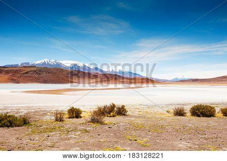 Plateau Altiplano, Bolivia