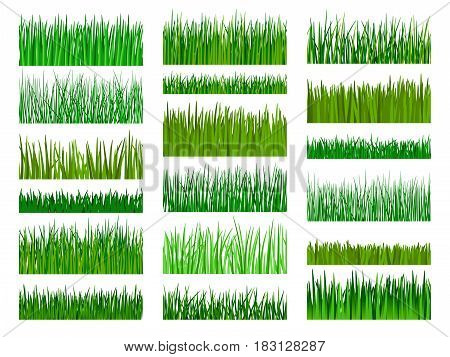 Vector green grass. Grass border horizontal seamless pattern isolated on white background