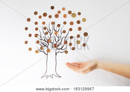 A money tree with coins, wallet with money, hand with money