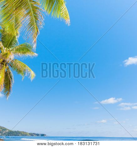 Exotic Paradise Green View