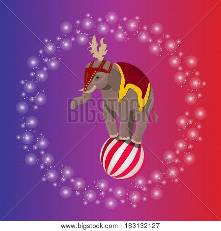 Very high quality original trendy vector illustration of circus elephant balancing on ball