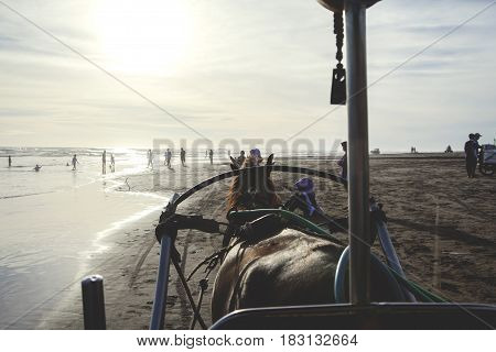 Yogyakarta Indonesia. April 20 2017: Picture of horse draw a cart with people relaxing on the beach at sunset time