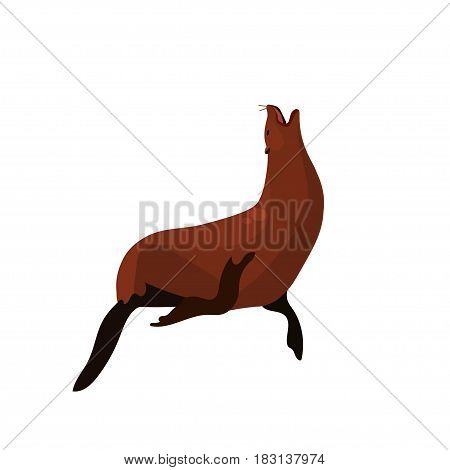 Very high quality original trendy vector illustration of Sea Lion or seal