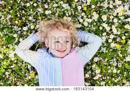 Child on green grass lawn with daisy and dandelion flowers on sunny summer day. Kid playing in garden. Little boy dreaming and relaxing. Kids on Easter egg hunt in spring park. Children gardening.