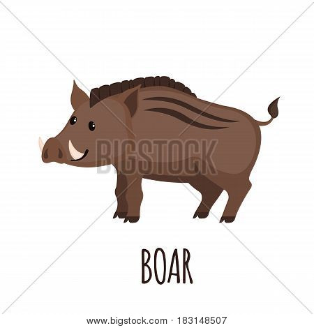 Cute wild Boar in flat style isolated on white background. Vector illustration. Forest animal. Cartoon boar.