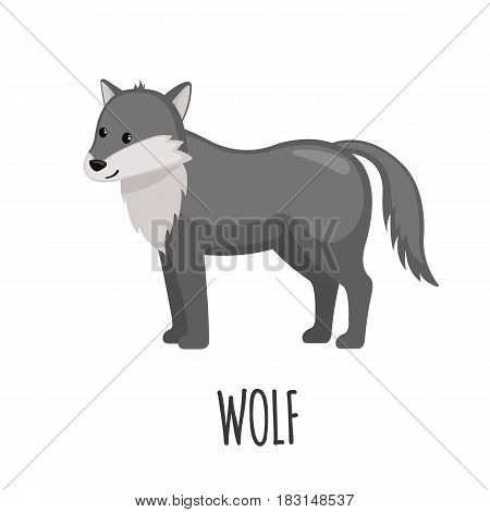 Cute Wolf in flat style isolated on white background. Vector illustration. Forest animal. Cartoon wolf.