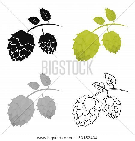 Hops icon in cartoon style isolated on white background. Oktoberfest symbol vector illustration.