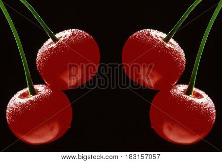 symmetry cherry red isolated on a black background