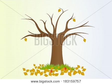 lonely autumn tree with fallen yellow leaves, vector, horizontal