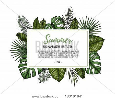 Summer Tropical Exotic Template. Label With Palm Leaves (monstera, Areca Palm, Fan Palm, Banana Leav