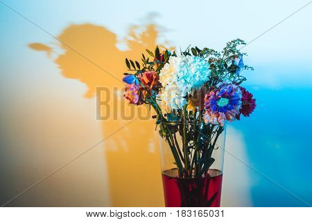 Wilted Flowers In Red Water In Colored Light