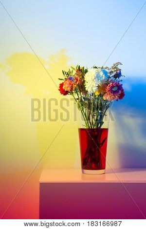 Flowers just starting to wilt in a tall transparent vase and red water in front of a white wall colored a number of colors with speedlights and gels.