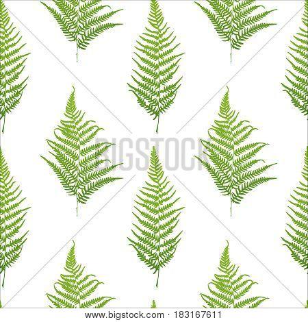 Fern green silhouette seamless pattern. Vector illustration
