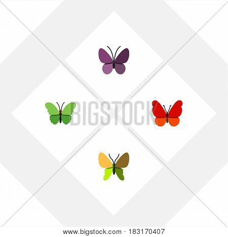 Flat Moth Set Of Violet Wing, Beauty Fly, Milkweed And Other Vector Objects. Also Includes Summer, Milkweed, Insect Elements.