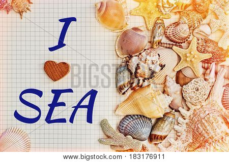 Opened checkered notebook or diary half covered by sea shells and tagline - I love sea