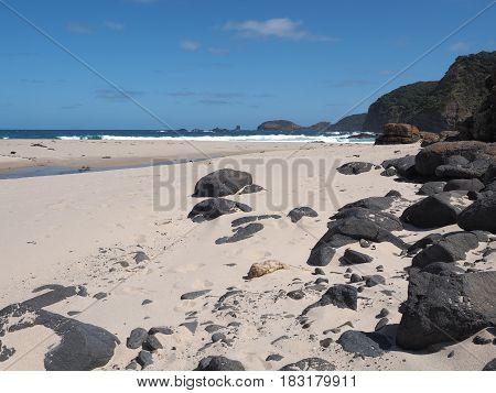 The shipwreck coast at Bushrangers Bay near Mornington Victoria Australia 2017