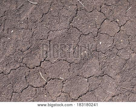 Deep random cracks in dry brown soil, Australia 2017