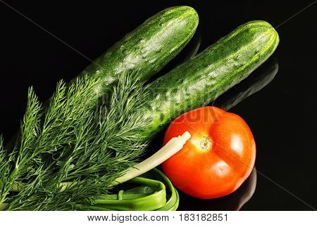 Pimpled cucumbers and greenhouse tomatoes with greens onions dill isolated on a black background