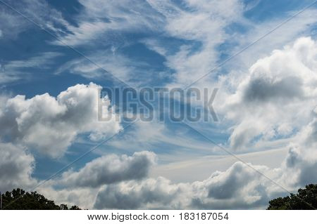 Pretty and peaceful white clouds fill the blue sky just above the tree line on a bright clear day