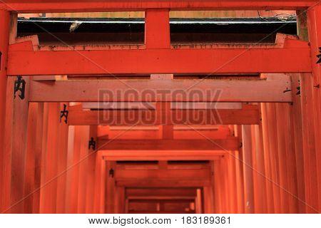 Torii Gate Of Fushimi Inari Taisha In Kyoto, Japan