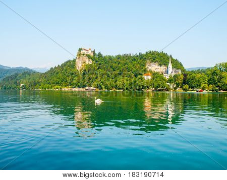 Bled Castle above Bled Lake on sunny summer day, Slovenia, Europe.