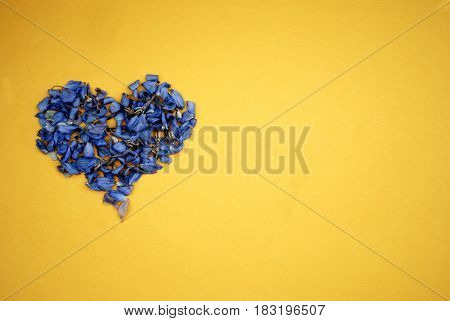 Heart of dried blue flowers on bright yellow background