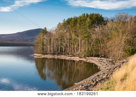 Shoreline of the Ashokan Reservoir taken during the golden hour. The Ashokan, which is located in the Catskill Mountains of the Hudson Valley in New York, is part of the water supply system for NYC. Fallen trees collect along the shore. The Reservoir is a