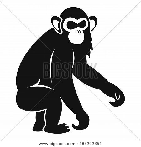 Macaque icon. Simple illustration of macaque vector icon for web
