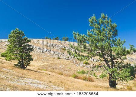 Mystical autumnal landscape from Ai-Petri mountain tableland in Crimea Ukraine.