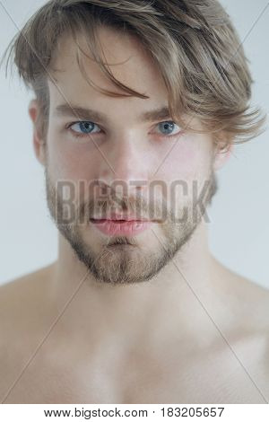 Stylish blond hair haircut and young unshaven face skin. Handsome bearded man with beard or sexy caucasian macho on grey background