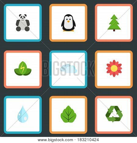 Flat Conservation, Polar Bird, Foliage And Other Vector Elements. Set Of Eco Flat Symbols Also Includes Nature, Recycle, Bear Objects.