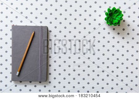 Pencil is on closed notebook. Small green plant in flowerpot. Top view. Copy space