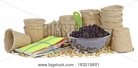 on the table are many pitchers cups of peat earth humus in a glass bowl a green plastic shovel packets of seeds garden plant nasturtiums pumpkins courgettes prepared for planting plants isolated on white background