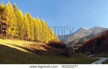 Autumnal view of mount Klak Mala Fatra from Strazovske vrchy Slovakia