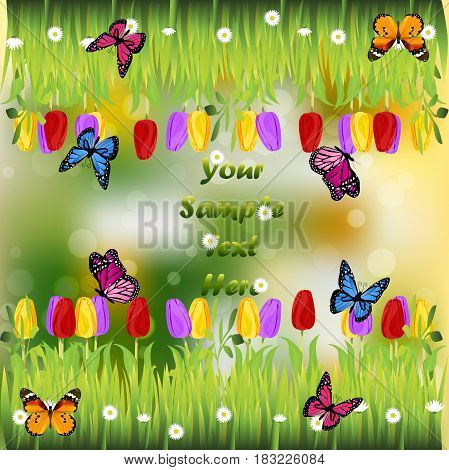 Very high quality original trendy illustration of grass with flowers, tulip and butterfly frame for text or card