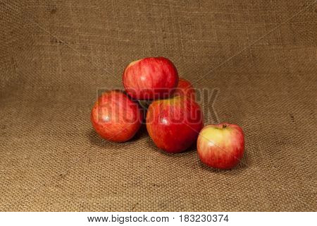 Ripe red apples lie on the cloth