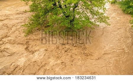 Wild river flooding the forest disastrous weather