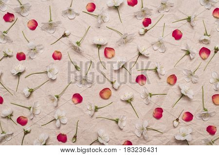 Pattern of cherry blossom flowers and red rose petals on the background of old kraft paper. Flat layout, top view