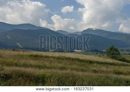 Majestic mountain top overgrown with coniferous forest, valley and glade, Rila mountain, Bulgaria